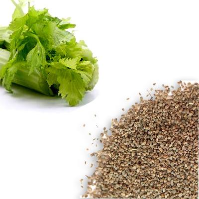 Celery Seed Whole - Whole