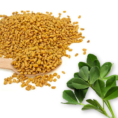 SPECIAL ITEM-Fenugreek - Whole