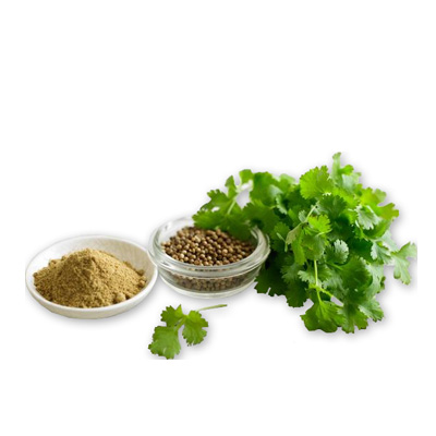 Coriander - Ground